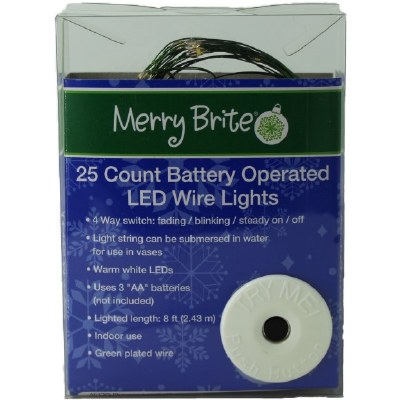 25CT BO LED WIRE LIGHTS