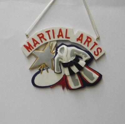 MARTIAL ARTS SUIT