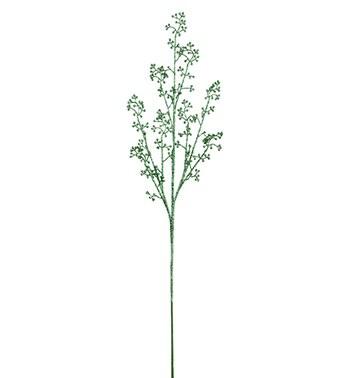 GREEN BERRY SPRAY