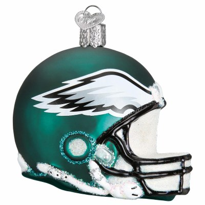 EAGLES GLASS HELMET