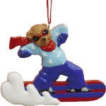 SNOWBOARDING BEAR