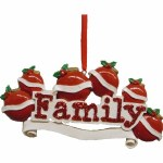 FAMILY OF 6 TO PERSONALIZE