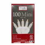 100 CT CLEAR MINI LIGHT SET