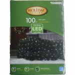 100 CT LED NET LIGHT SET WHITE