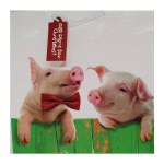 GIFT BAG WITH PIGS