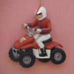 ATV RIDER MALE