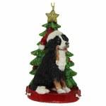 BERNESE MOUNTAIN DOG  WTH TREE