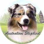 AUSTRALIAN SHEPHARD CAR COASTER