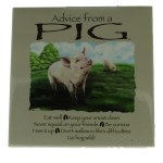 ADVICE FROM A PIG MAGNET