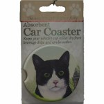 BLACK AND WHITE CAT CAR COASTER