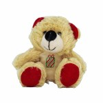PLUSH TEDDY BEAR PRESENT
