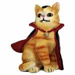 DRACULA ORANGE CAT