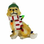 YELLOW DOG WITH SCARF