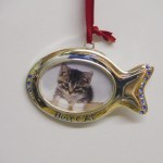 PICTURE FRAME FOR A CAT
