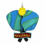 PICKLE BALL RACKET