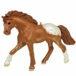APPALOOSA DREAM HORSE