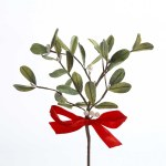 MISTLETOE PICK