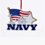 US NAVY  WITH FLAG