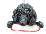 BLACK POODLE WITH NAME PLATE