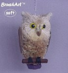 BRUSH  LONG EARED OWL