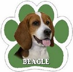 BEAGLE CAR MAGNET