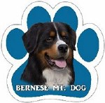 BERNESE MT. DOG MAGNET
