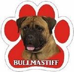 BULL MASTIFF MAGNET
