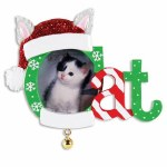 CHRISTMAS CAT FRAME