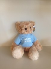 Story Teddy In Blue