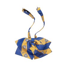 Sigma Gamma Rho Striped Bowtie