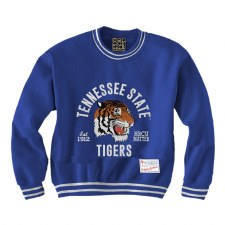 TSU Youth Mascot sweatshirt