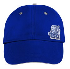 Tennessee State University Mini Tiger Hat