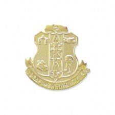 Alpha Kappa Alpha Sandblast Shield Lapel Pin