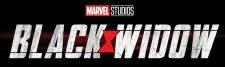 HCX Black Widow Movie GravityFeed (24)