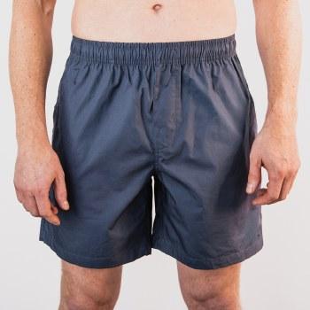 Bronxton Beach Shorts Blue