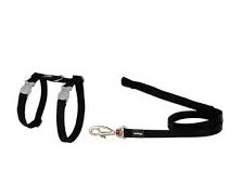 Red Dingo Black Cat Harness