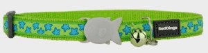 Red Dingo Lime Green Blue Star Cat Collar