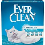 Everclean with Charcoal 25lbs