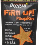 Dyd 4oz Firm Up Pumpkin