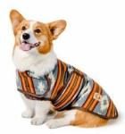 Chilly Dog Large Denim Sunset Coat