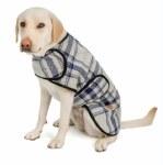 Chilly Dog Large Grey/Blue Plaid Coat