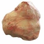 PS Frozen Raw Beef Knuckle Bone