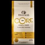 Wellness CORE 5 lb Indoor