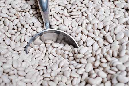 White Northern Beans 1 lb