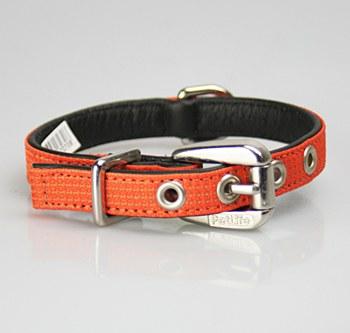 Petlife Dog Collar Small 37.5cm Action Orange