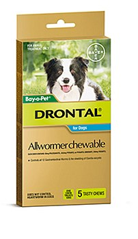 Drontal All Wormer for Medium Dogs (5 Pack)