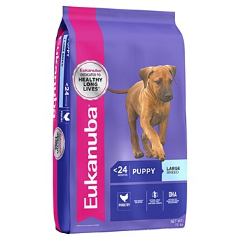 Eukanuba Puppy Large Breed 15kg Dry Dog Food