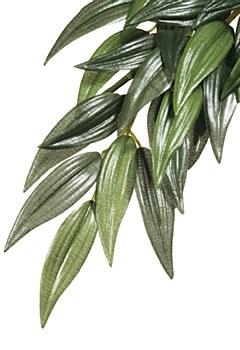 Exo Terra Forest Plant Ruscus Medium