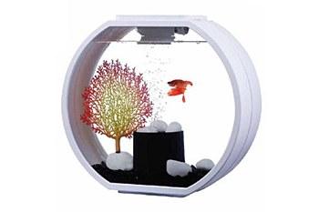 Blue Planet Deco O White 10 Litre Mini Fish Tank