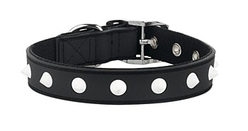 Gummi Dog Collar Spike Puppy Black
